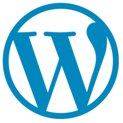 WordPress - Skill de front end